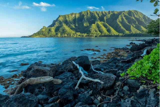 Niezwykłe widoki na plażach w Oahu