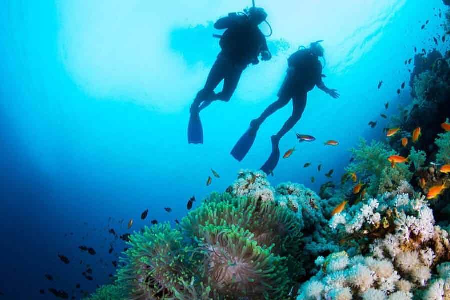 Najpiękniejsze miejsca do nurkowania