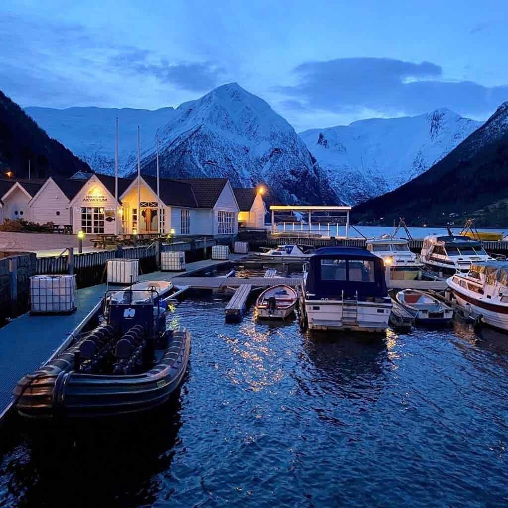 Sognefjord - Skandynawia wycieczki
