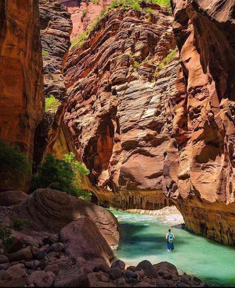 Tropiki - Oman