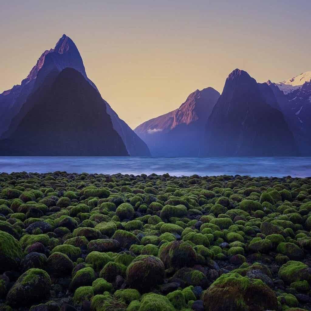 Temperatury w Nowej Zelandii