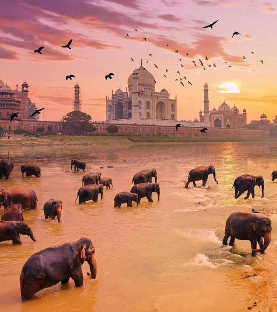 kiedy jechać do Indii