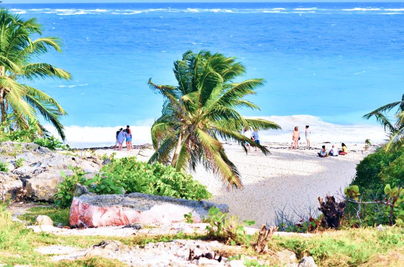Barbados w styczniowym klimacie